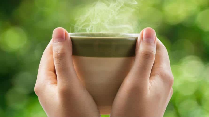 Čaj od vrkute