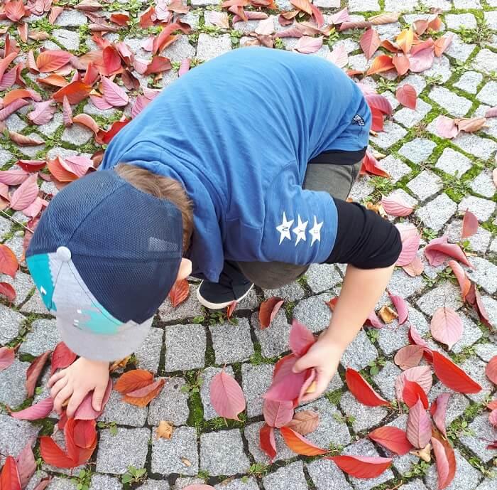 Aktivnosti s lišćem