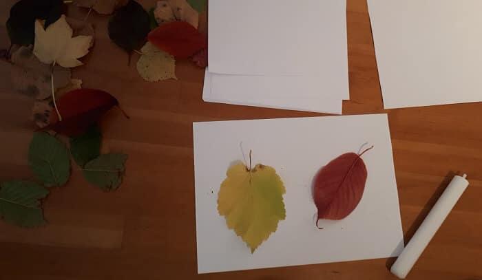 Ideje s lišćem