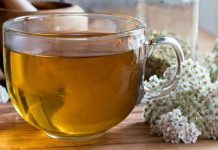 Čaj od stolisnika