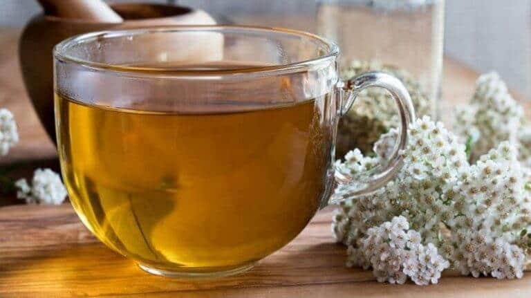 Čaj od stolisnika – ljekovitost, nuspojave, priprema i gdje kupiti?