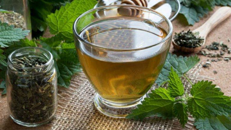 Čaj od koprive za mršavljenje i kosu – nuspojave, priprema i cijena