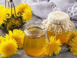 Med od maslačka – kako se pravi i za što se koristi?