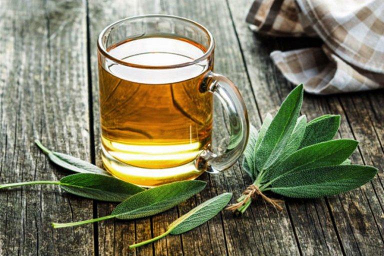 Čaj od kadulje (žalfije) – priprema, nuspojave, ljekovitost i cijena