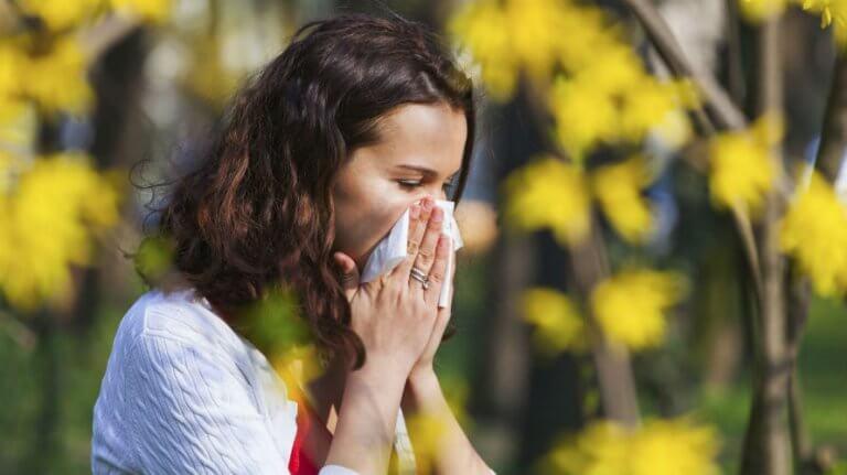Ambrozija – simptomi alergije, kako ih prepoznati, spriječiti i olakšati?