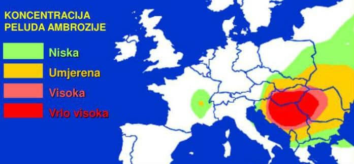 Koncentracija peludi ambrozije u Europi