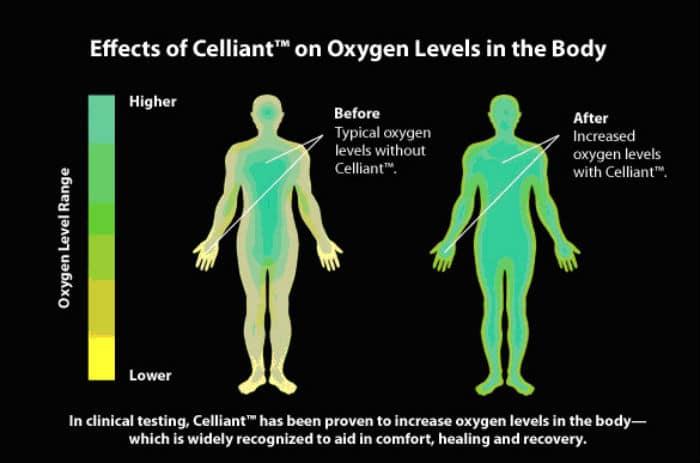 Celliant - što je i kako pomaže zdravlje?