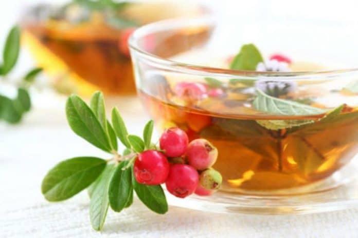 Uvin čaj za bubrege i urinarne infekcije