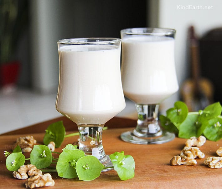 Orahovo mlijeko