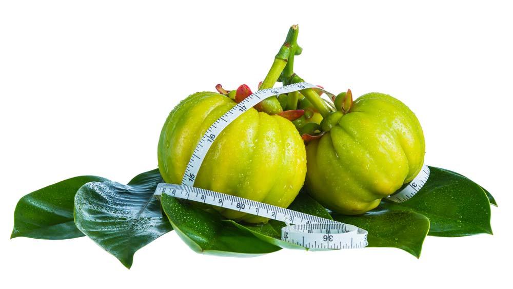 GoSlimmer sastojci: Garcinija – sagorijeva masnoću, ubrzava metabolizam i smanjuje apetit